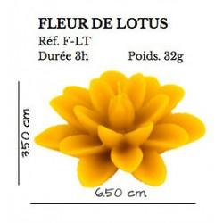 Fleur de Lotus - flottante x3